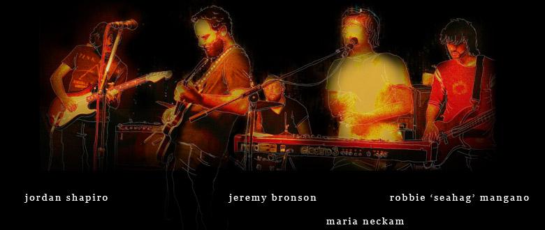 David Bronson Band