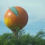 David-Bronson-Spring-Southern-Tour-2014 30